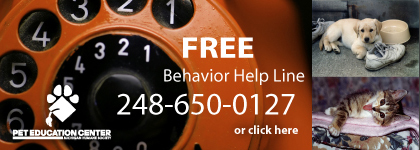 Free Behavior Help Line!