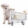 Shop MHS online!