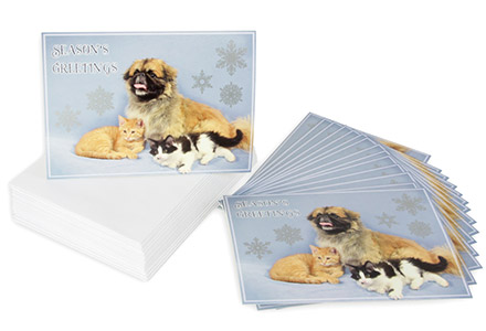 2013 mhs holiday cards - Humane Society Christmas Cards