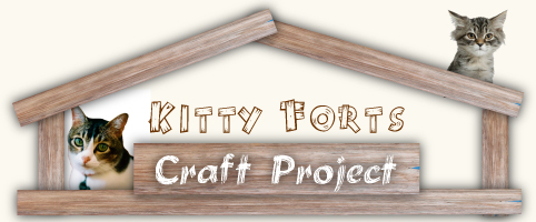 Kitty Forts Craft Project