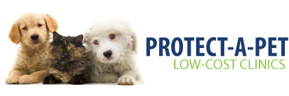 PROTECT-A-PET Vaccination Clinics