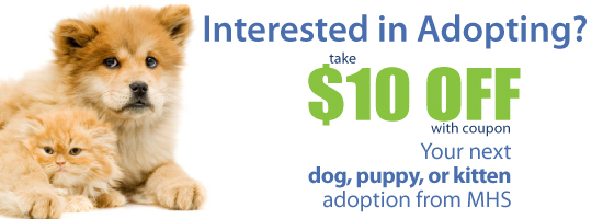 $10 off your next dog, puppy, cat or kitten adoption