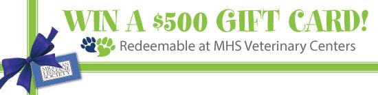 Win free veterinary care!