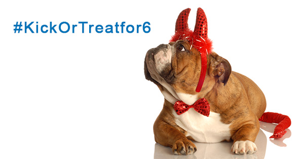 detroit lions punter sam martin with support from premier pet supply is kicking off a social media halloween pet photo contest to benefit the michigan - Pet Halloween Photo Contest