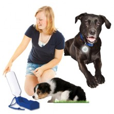 Pet Waterbottle With Bowl And Safety Light