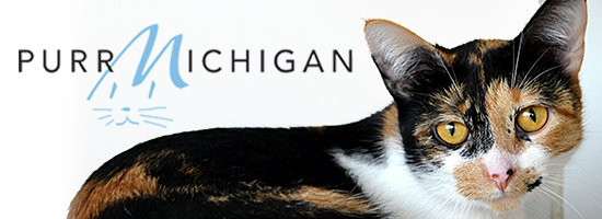 Purr Michigan
