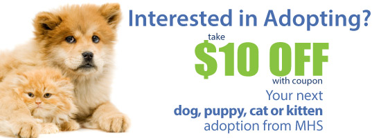 Take $10 Off Your Next Dog, Puppy, Cat or Kitten Adoption!