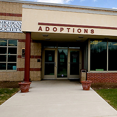 MHS Detroit Adoption Center
